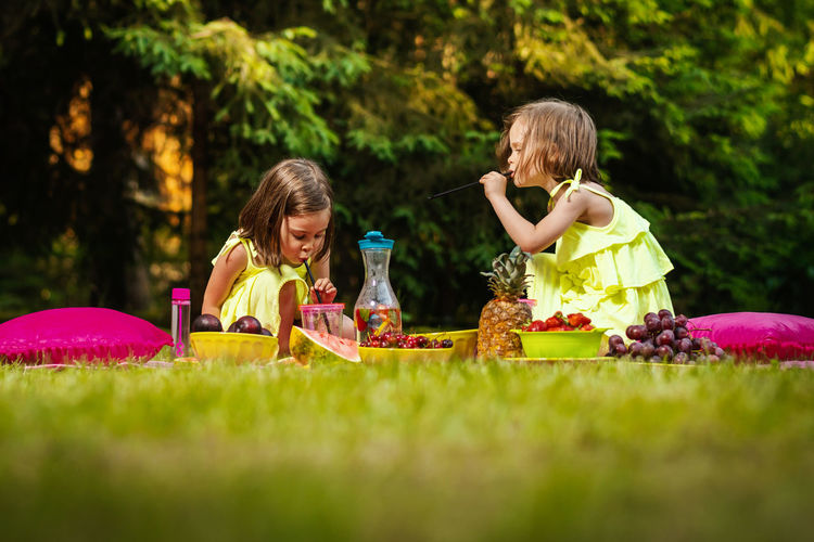 Picnic Girl Child Childhood Kid Forest Summer Sister Sisters Twins Girls Females Women Grass Togetherness Family Leisure Activity Sibling Two People Offspring Nature Full Length Friendship Enjoyment People Food And Drink Outdoors Easter Egg Hunt