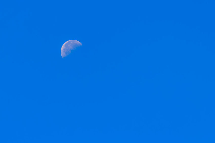 Half Moon During Day in Blue Sky. Bright moon orbiting earth in a blue clear sky during the daytime showing craters. Waxing Gibbous past first quarter. Southern hemisphere, winter. First Quarter 48% Full First Quarter New Moon, Phase = Waxing Moon Waxing Gibbous Astronomy Beauty In Nature Blue Blue Sky Blue Sky Background Clear Sky Copy Space Crescent First Quarter First Quarter Moon Half Moon Low Angle View Moon Moon And Clouds Moon Crater Moon Craters Moon Light Moon Surface Moonlight Moonlightscape Moonshine Moonshot Nature Night No People Outdoors Scenics Sky Tranquil Scene Tranquility Waxing Crescent Waxing Crescent Moon Waxing Cresent Waxing Gibbous Daytime Waxing Moon