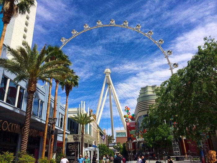 Travel Destinations Palm Tree Outdoors Sky Day Vegas  Las Vegas Observation Wheel Wheel Scenics Scenery Scenic Lasvegas Tourism Tourist Attraction  Clouds And Sky