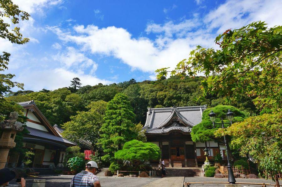 Shuzen-ji Temple Izu, Japan Izu Japan Japan Photography Culture Tree Architecture Sky Green Color Blue