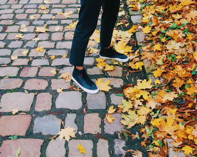 Low section of man standing on fallen leaves