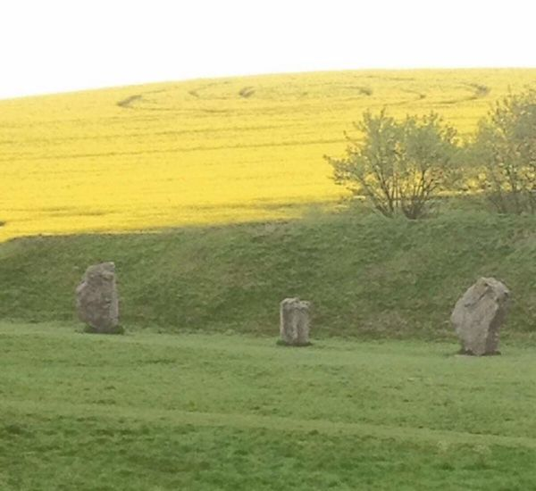 Grass Agriculture Rural Scene Field Landscape No People Nature Crop Circle Standing Stones Ancient