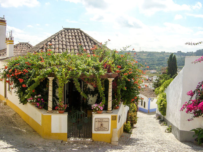 Architecture Building Exterior Built Structure City Cloud Cloud - Sky Day Flower Footpath Growth House No People Outdoors Plant Portugal Potted Plant Residential Building Residential Structure Sky Street Tree Óbidos