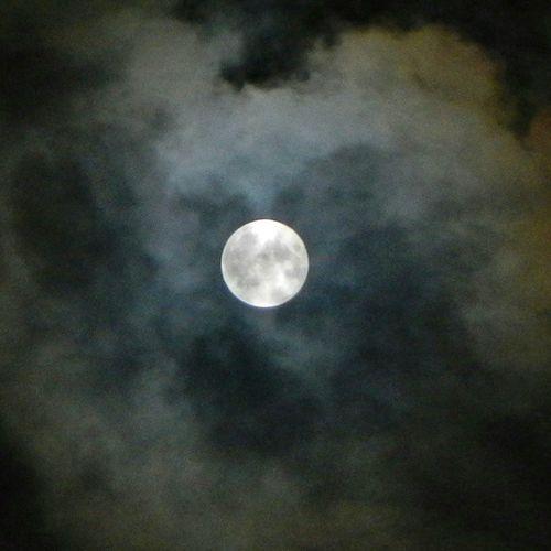 お月さま、ようやく顔を出してくれました。残念ながら雲で覆い隠され、皆既月食は全く見れず。 The moon finally shows its face after thetotal lunar eclipse ended! I wanted to see the blood moon!!! Eclipse Totallunareclipse Fullmoon Moon moonlight 月 皆既月食 満月 月明かり 月夜 月光