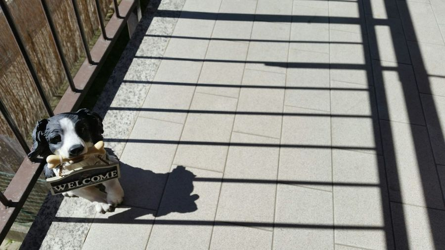 Relaxing In The Sun Shadows Dog Welcome Sign Balcony EyeEm Best Shots Eye4photography  Galaxys5camera Lounge Music