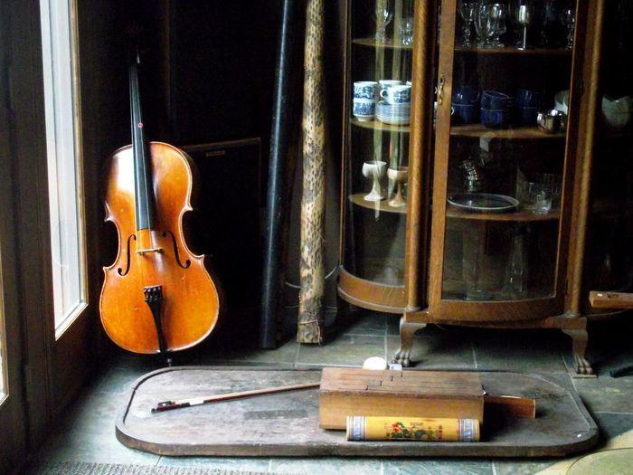 Cello Musical
