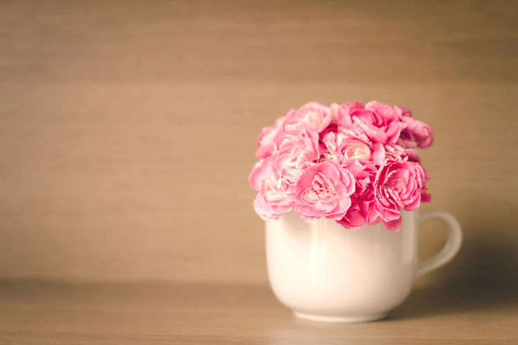 Fresh pink carnation flower on wooden shelf background Beauty In Nature Bunch Of Flowers Close-up Flower Flower Arrangement Flower Head Flowering Plant Fragility Freshness Indoors  Nature No People Peony  Petal Pink Color Pitcher - Jug Plant Rosé Still Life Table Vase Vulnerability  Wood - Material
