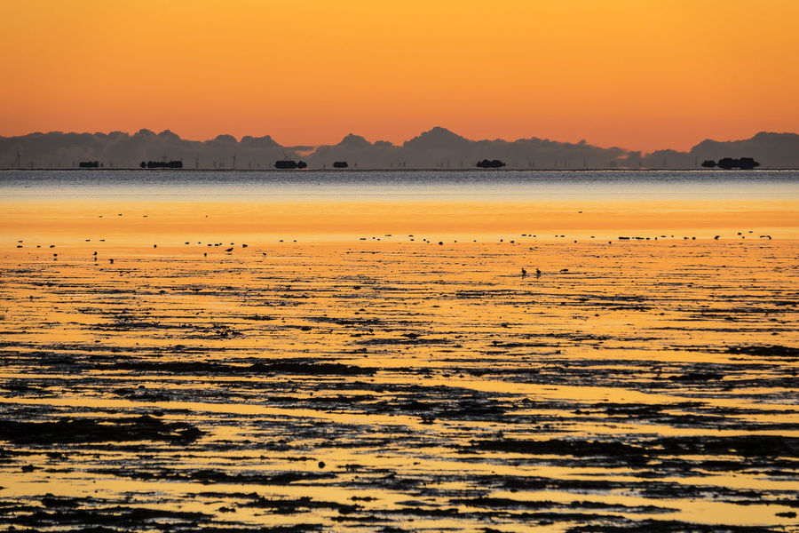 Sunrise on the North Sea island Amrum, Germany. Amrum Holiday Morning Relaxing Beauty In Nature Day Island Journey Landscape Nature North Sea Orange Color Outdoors Scenics Silhouette Sky Sunrise Sunup Tourism Tranquil Scene Travel Destinations Vacation Wadden Sea Water Waterfront