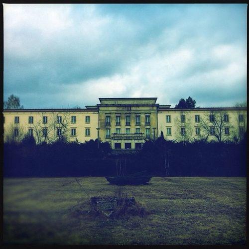 #brandenburg #bogensee #jugendschule #wilhelmpieck #denkmal #kultur #wald