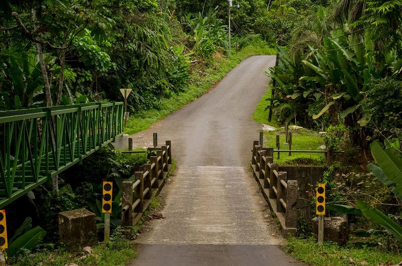 Street By Footbridge Amidst Trees