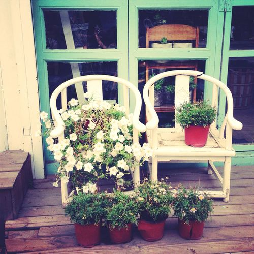 Lovely Vintage mood~ white flowers and chairs!