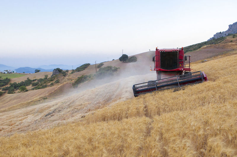 Harvester gathering wheat at mountain area of Antequera, Spain. Combine machine working on sloping ground Agriculture Beauty In Nature Clear Sky Combine Harvester Day Field Land Vehicle Landscape Mode Of Transport Nature No People Outdoors Rural Scene Scenics Sky Transportation