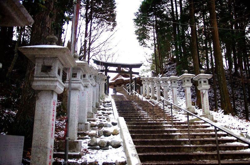 初詣に行った 三峯神社 は 雪 景色だった。埼玉なのに、太陽が出ててもゼロ度とは(´+ω+`) 初詣 神社 雪