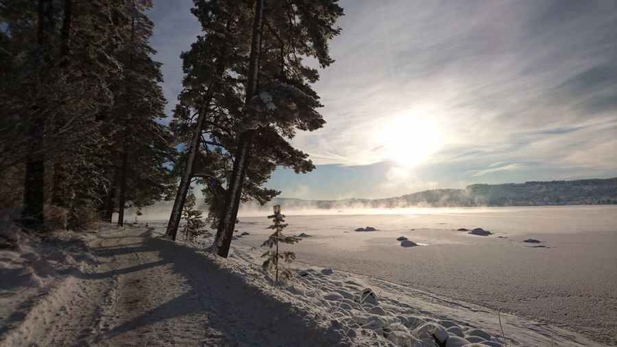 Scenic view of sunlight on snow covered field
