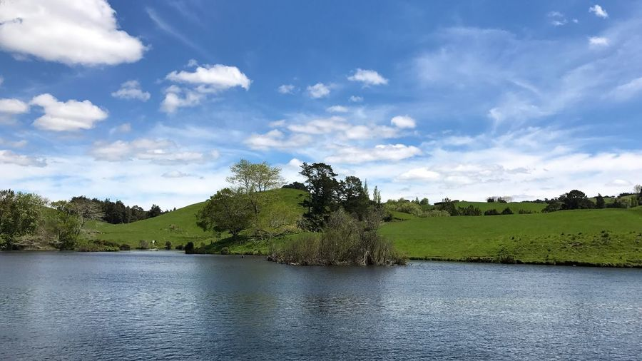 View Of Trees By Calm Lake Against Blue Sky