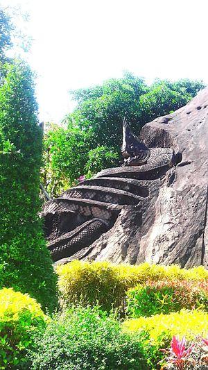 พญานาค Thailand Thailandtravel สกลนคร ภูพาน พญานาค แกะสลักหิน หินโชว์ หิน Day Sky