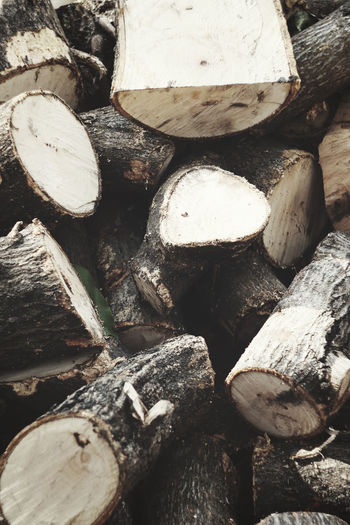 Abundance Backgrounds Close-up Day Deforestation Environmental Issues Eyeem Philippines Firewood Full Frame Heap Large Group Of Objects Log Lumber Industry Nature No People Outdoors ShootTheDay Stack The Great Outdoors - 2016 EyeEm Awards The Week Of Eyeem Timber Wood - Material