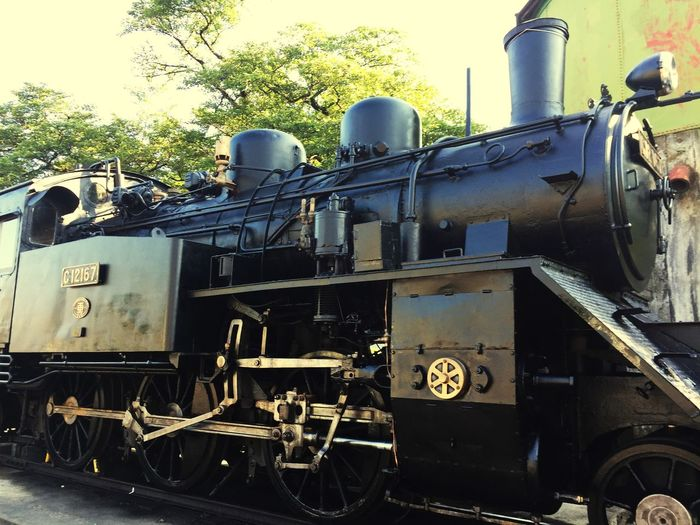 蒸気機関車 Tottori 鳥取県 蒸気機関車 Steam Locomotive Transportation Rail Transportation Train Day No People Nature Mode Of Transportation