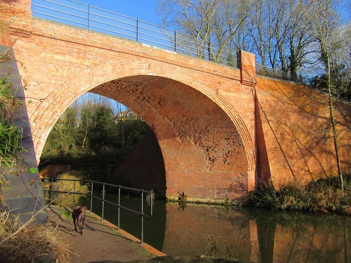 Skew Bridge Canal Canals And Waterways Canonphotography Architecture Bridge - Man Made Structure Connection Arch Outdoors Day Tranquility Water Nature Sky Swindon Rushey Platt