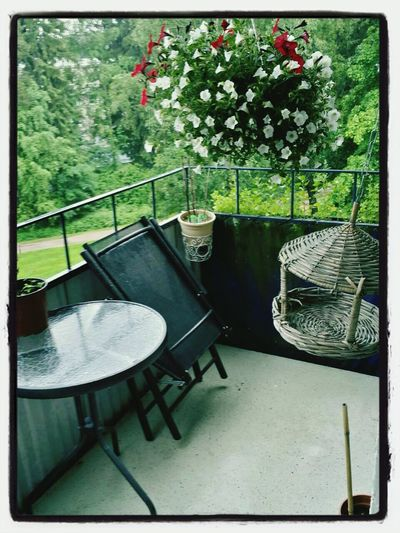 As I slaved away yesterday, The Cuban took a break from his own work to tidy up our balcony. Now, we just need a sunshine! Balconyblues