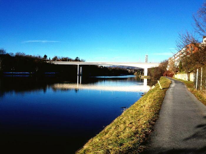 Relaxing Sunny☀ River Dog Walking Beautiful