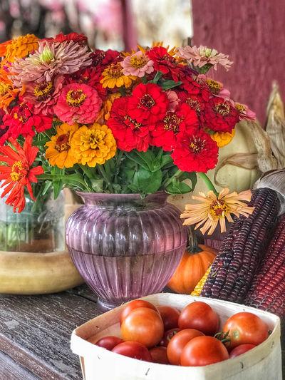 Autumn Farmers