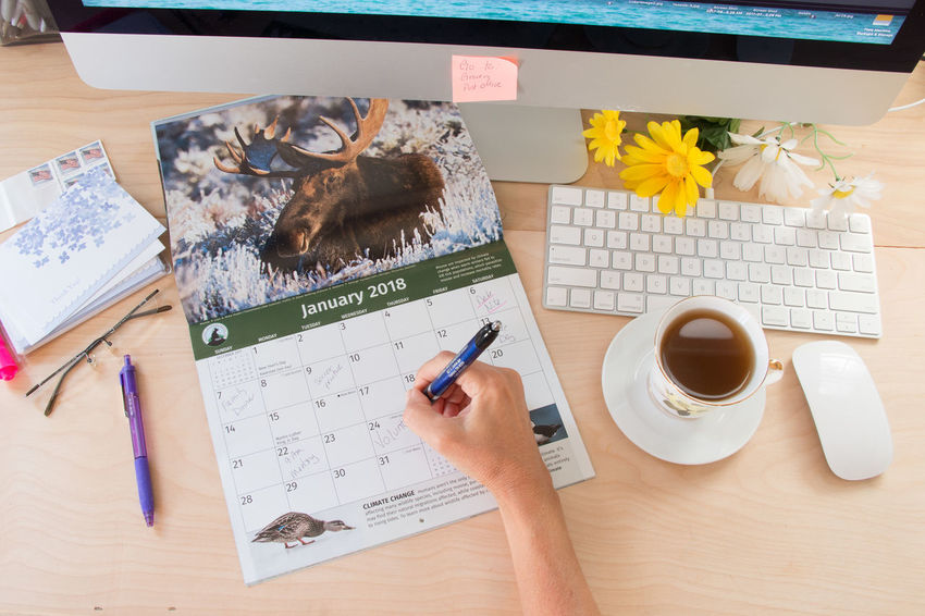 Calendar flat lay Calendar Day Desk Diary Directly Above High Angle View Indoors  No People Paper Pen Pencil Table