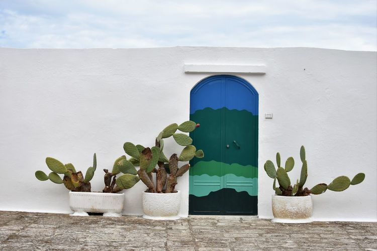 Architecture Beauty In Nature Building Exterior Built Structure Day Green Color Growth Nature No People Outdoors Plant Porta Del Paradiso Potted Plant Sky Whitewashed Window
