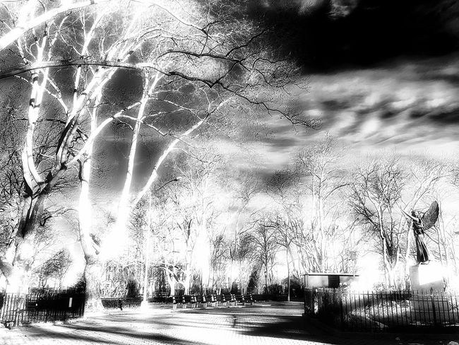 Minerva, is that you? Statue Park Greenpoint War Memorial Walking Around Blackandwhite Photography FiveSigmaPhoto Outside Red Filter Reaching Carl Augustus Heber Park - Man Made Space Overexposed Blackandwhite