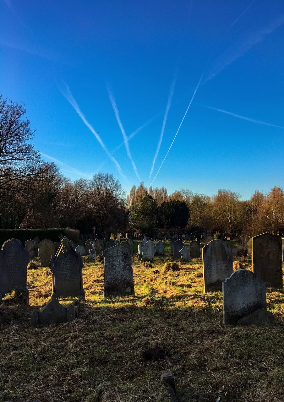 blue, sky, day, no people, cemetery, outdoors, tree, memorial, clear sky, sunlight, nature, bare tree, beauty in nature, vapor trail, architecture