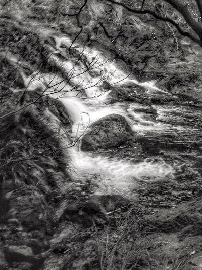 Creekside Trail Creekside Photography Waterfall Fall Blackandwhite Blackandwhite Photography Beauty In Nature Blurred Motion Nature Water No People Landscape Outdoors Day (null)Japan Photography
