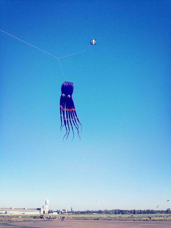 The kraken flying high Kite Blue Sky