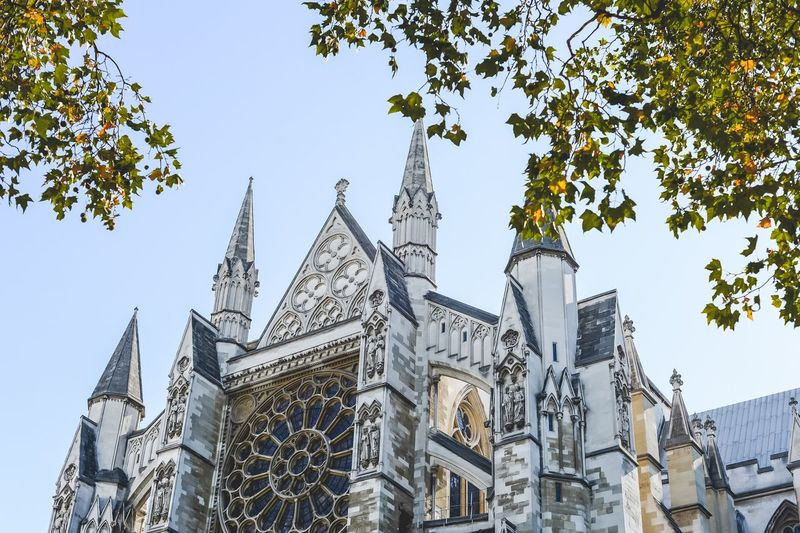 Europe England London Westminster Abbey Low Angle View Built Structure Sky Tree Building Exterior Architecture Plant Day No People Building History Clear Sky Travel Destinations