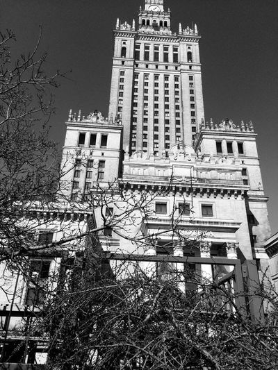 Kultura Monument Tower Clock Trees In The City Warsaw Poland Black And White Black And White Palace Of Culture Architecture Built Structure Building Exterior Building Nature Sky City