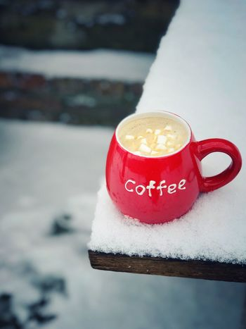 Cup of coffee on the white snow Marshmallow Red Mug Cup Coffee Red Snow Cold Temperature Winter Close-up No People Food Stories Food And Drink Day Freshness Shades Of Winter