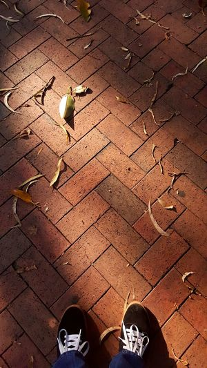 Pattern Pieces Red Ochre Zickzack Leaves Yellow Autumn Prince Alfred Square Parramatta Warm Relaxing Want To Lay Down Systematic Textured  Geometry
