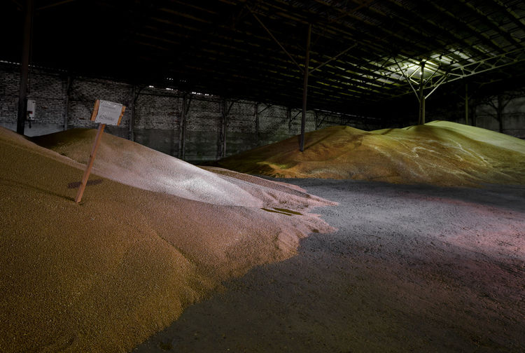 Heap of wheat in barn