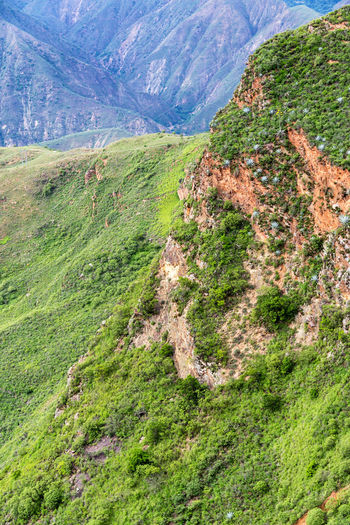 View of rugged Chicamocha Canyon near Bucaramanga, Colombia Chicamocha Canyon Cliffs Colombia Green Nature Panachi Santander Scenic Travel Tree Trees View Aerial Bucaramanga Canyon Chicamocha Landscape Mountain Mountains Outdoor Park River Tourism Vacation Wire