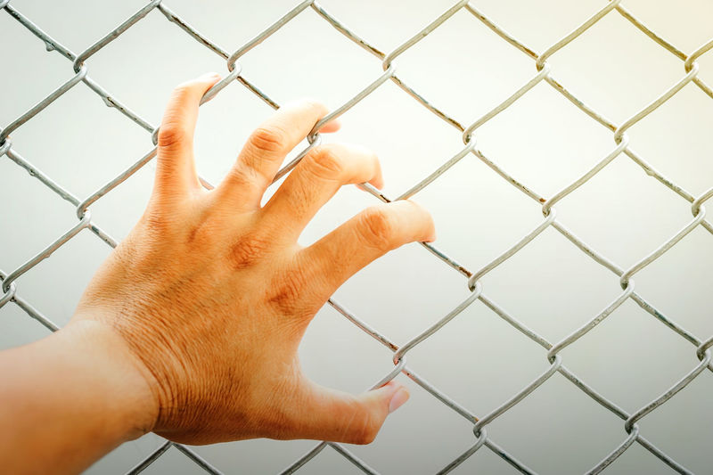 Hand holding on chain link fence, Vintage filter effect Barrier Body Part Boundary Chainlink Fence Close-up Crisscross Day Fence Finger Hand Human Body Part Human Finger Human Hand Indoors  Lifestyles Metal One Person Personal Perspective Real People Security