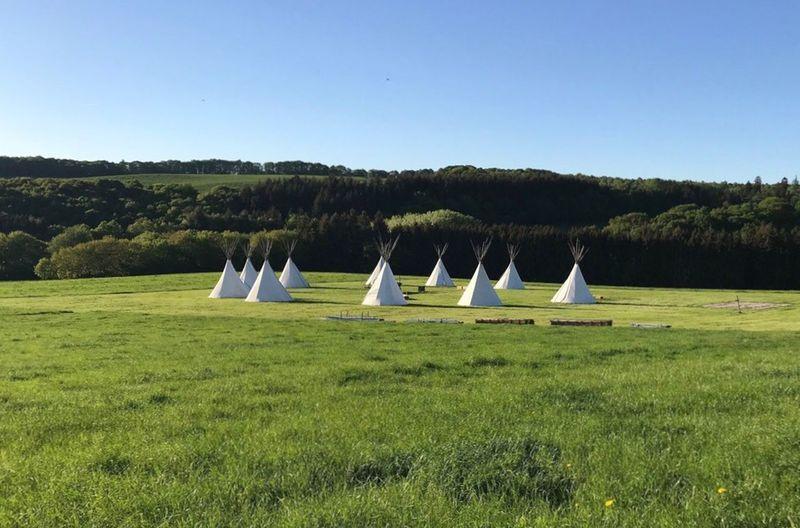 Camp Praiseland 😎 Tippi Plant Grass Sky Green Color Land Tree No People Nature Blue Landscape Field