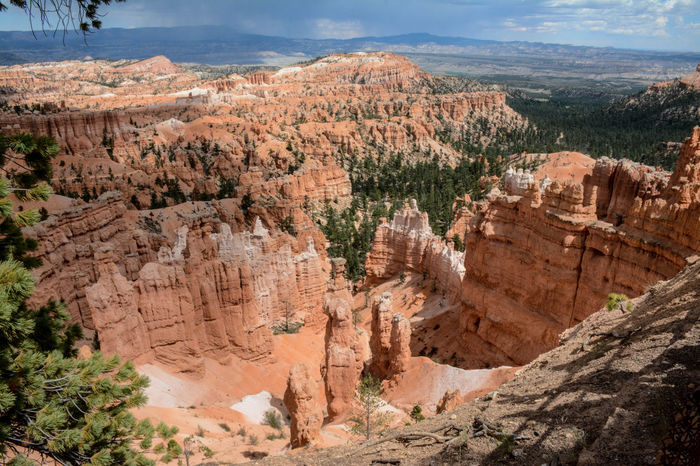 Bryce Canyon Beauty In Nature Bryce Canyon National Park Cliff Cloud - Sky Day Geology Landscape Mountain Nature No People Outdoors Physical Geography Rock - Object Rock Formation Rock Hoodoo Scenics Sky Tranquil Scene Tranquility Travel Destinations Tree