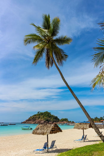 ASIA Redang Island Beach Beauty In Nature Day Horizon Over Water Malaysia Nature No People Outdoors Palm Tree Relaxation Sand Scenics Sea Shore Sky Tranquil Scene Tranquility Tree Vacations Water