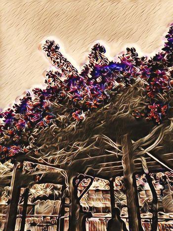 Edited My Way Edit Edits EyeEm Edits Eyeem Edit Day Outdoors No People Nature Sky Flowers Flowers,Plants & Garden ArtWork Art Art, Drawing, Creativity Artistic Colors Of Autumn Colorsplash Colour Color Portrait