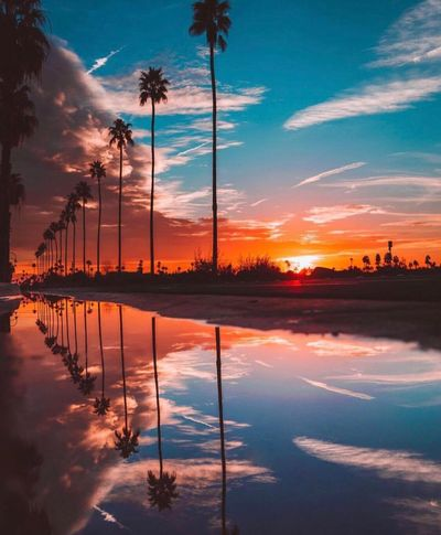 ¿Te gusta? 🌴🍃🙈 Reflection Sunset Sky Cloud - Sky Water Beauty In Nature Palm Tree Nature Scenics Tranquility Colors #color #colorful #TagsForLikes #red #orange #yellow #green #blue #indigo #violet #beautiful #rainbow #rainbowcolors #colour #roygbiv #instacolor #instagood #colorgram #colores #vibrant #multicolor #multicolored #instacolorful #colorworld