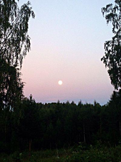 Full Moon Right Now Hälsingland