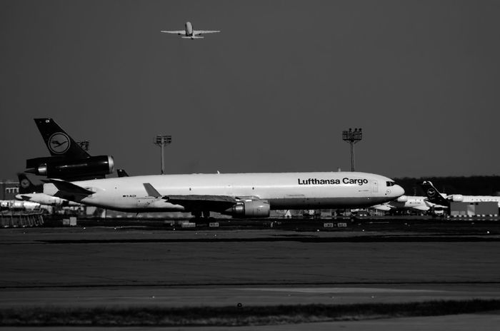 MD 11 Lufthansa Cargo before taking off at FRA Lufthansa Lufthansa Cargo MD 11 Aerospace Industry Air Vehicle Aircargo Airplane Airport Airport Runway Cargo Clear Sky Commercial Airplane Flying Freight Transportation Freighter Mode Of Transportation Motion No People Plane Runway Sichtmanufaktur Sky Transportation Travel