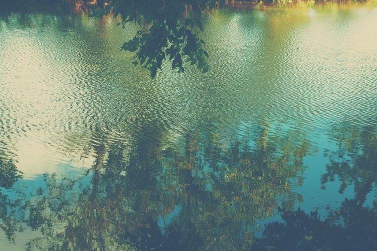 water colors... IvyandOak Reflection Shine On Naturelovers