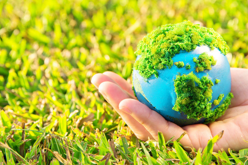 Close-up of person holding globe on grass