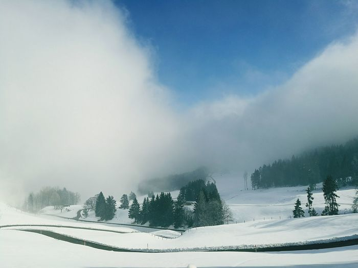 Nature Snow Winter Forest Tree No People Landscape Cloud - Sky Mountain Sky Outdoors Day Beauty In Nature Passstrassen Scheltenpass