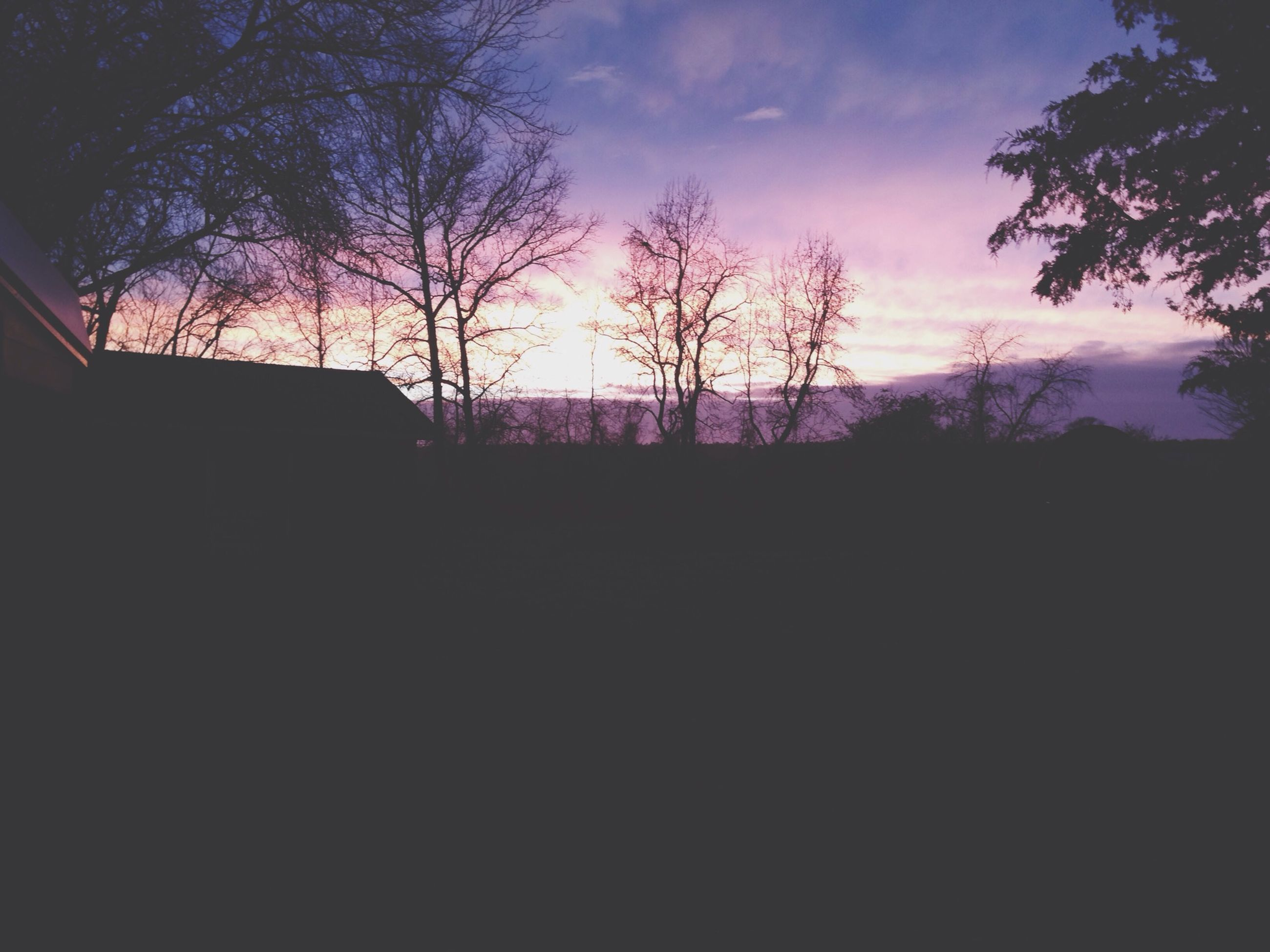 silhouette, sunset, sky, tree, tranquility, tranquil scene, scenics, beauty in nature, dark, landscape, nature, dusk, field, cloud - sky, idyllic, outline, cloud, no people, outdoors, bare tree